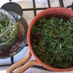 Podagrycznik  kulinarny