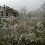 Zimowe szarwarki w Kamienicy I